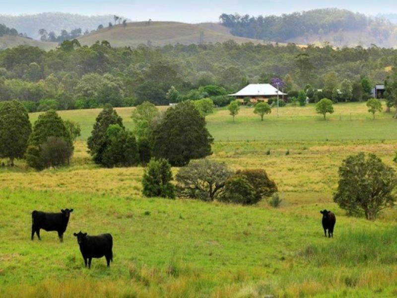 49 Maddens Lane, Wards River, NSW 2422