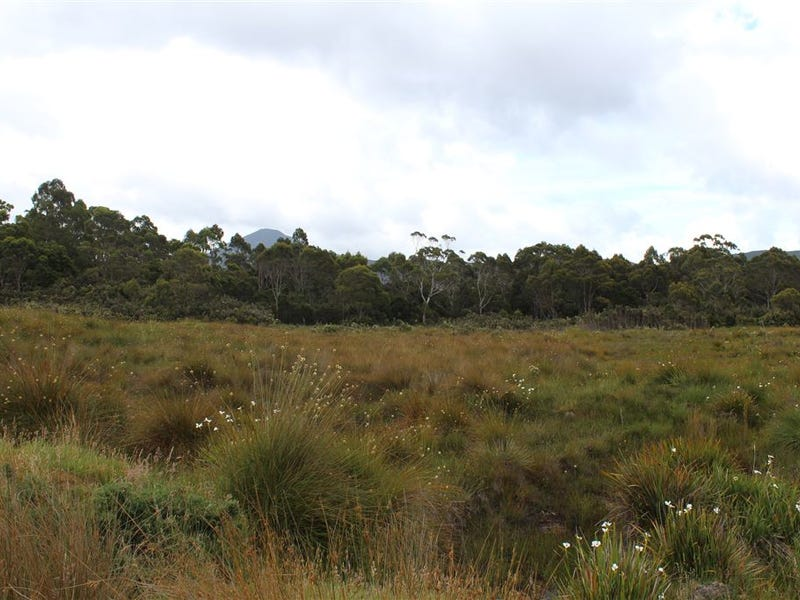 Lot 3 Zeehan Highway, Zeehan, Tas 7469