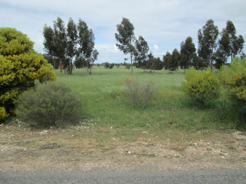 36 Magpie Drive, Tailem Bend, SA 5260