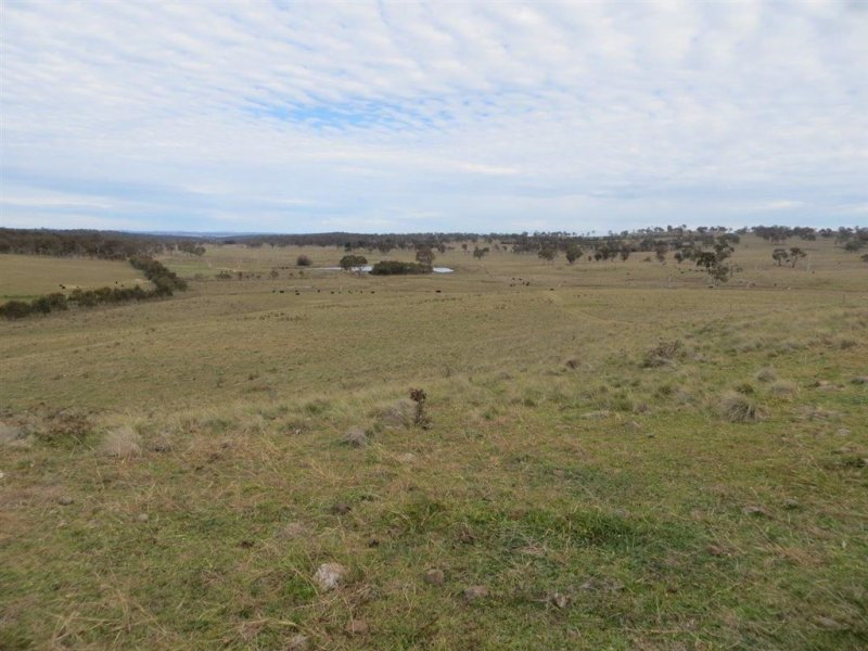 'WOODVILLE EAST', 789 DONALD ROAD, Armidale, NSW 2350
