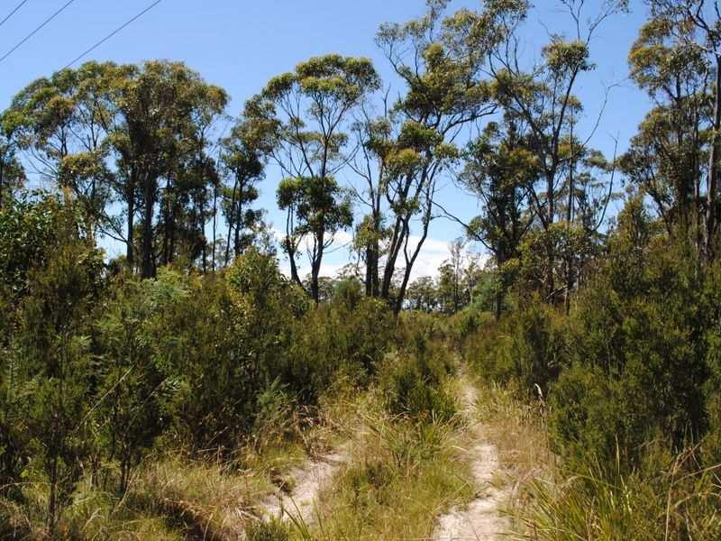 580 Greens Beach Road, York Town, Tas 7270