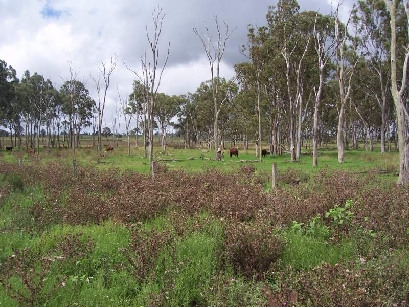 Address available on request, Upper Yarraman, Qld 4614