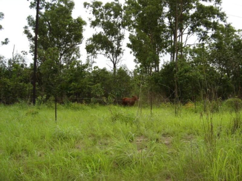 305 Bees Creek Road, Bees Creek, NT 0822