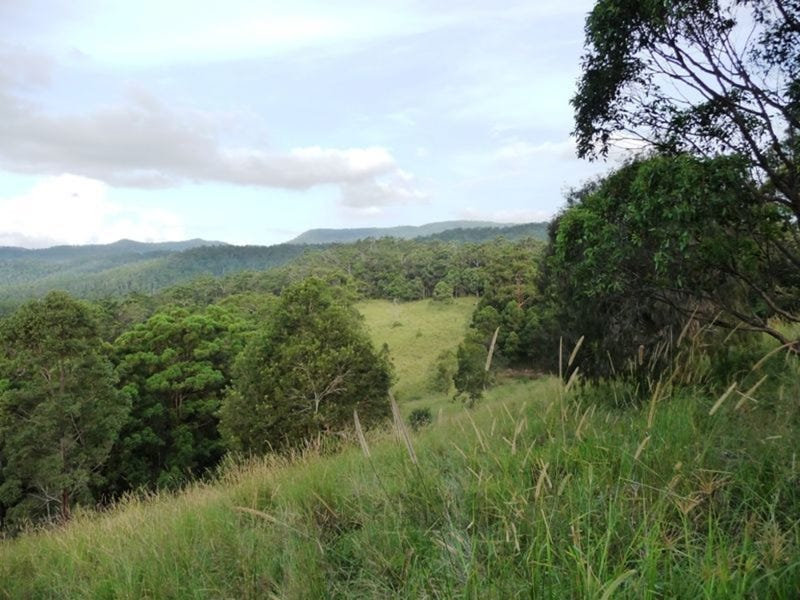 121 Pocket Road, Numinbah Valley, Qld 4211