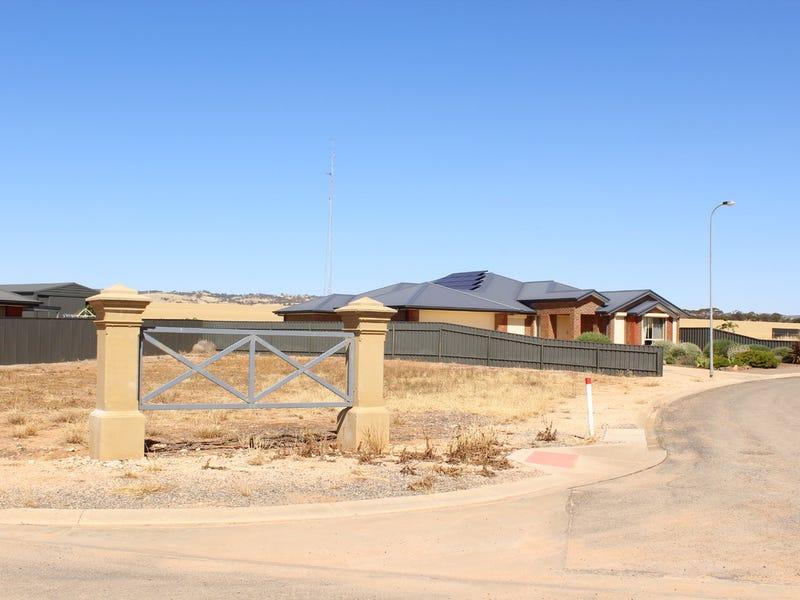 Lot 117, Cook Avenue, Blyth, SA 5462