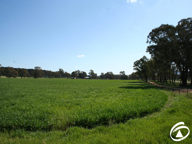 4309 Henry Parkes Way, Manildra, NSW 2865