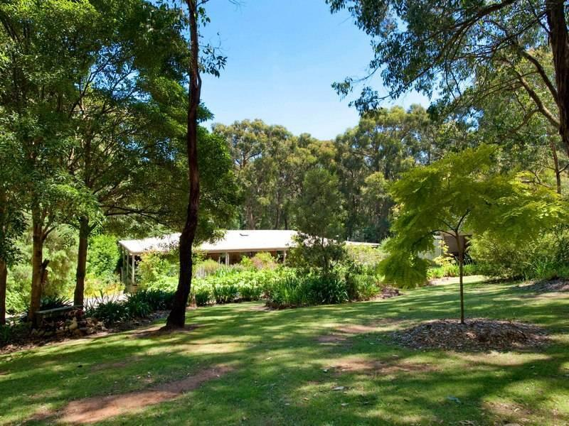 15 Pine Avenue, Red Hill South, Vic 3937