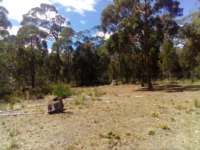 Lot 5 Skeggs Avenue, White Beach, Tas 7184