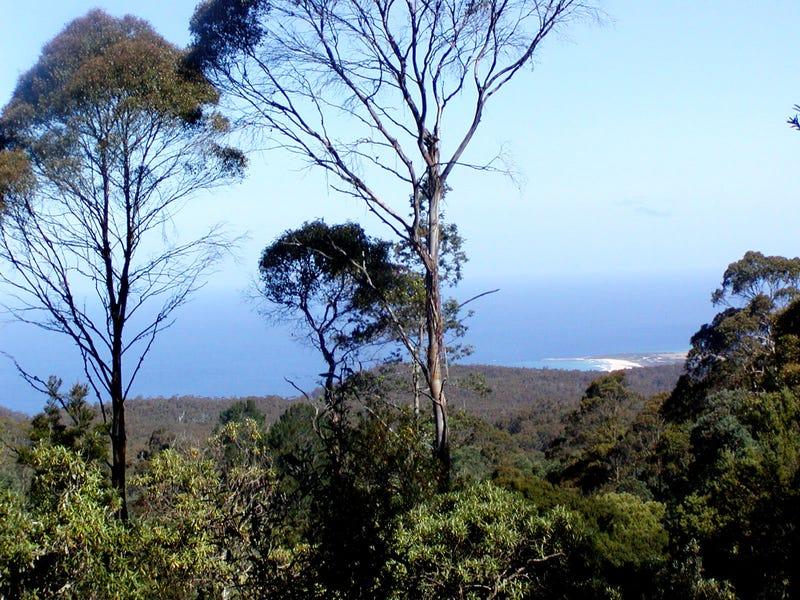 P2287 Mount Elephant Road, St Marys, Tas 7215