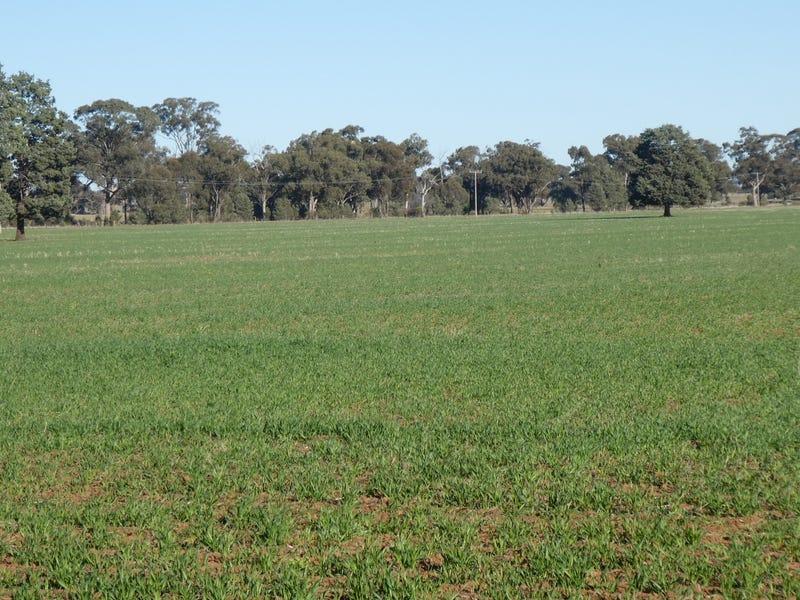 250 McCains Lane, Coolamon, NSW 2701