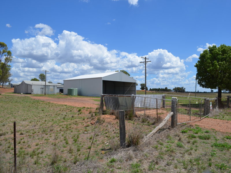 569 Wongoni Road, Dunedoo, NSW 2844