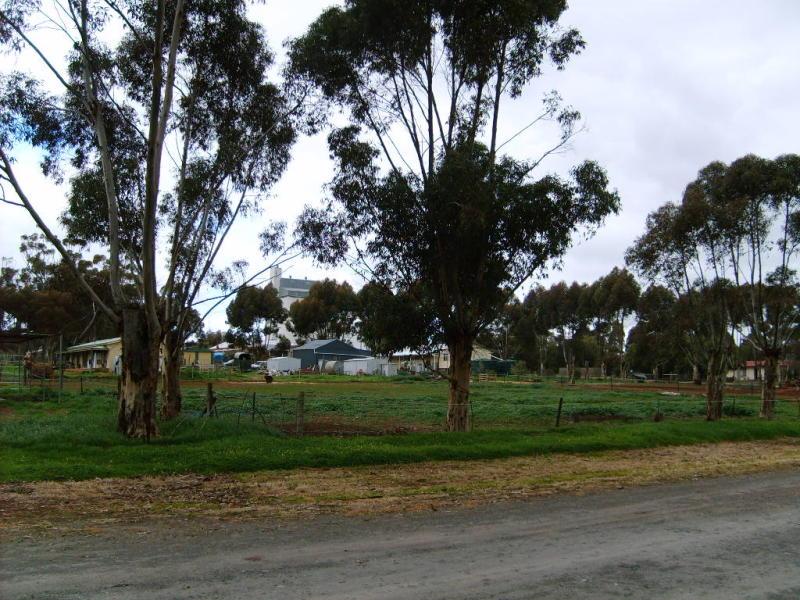 Lot 95, Cameron Tce, Farrell Flat, SA 5416