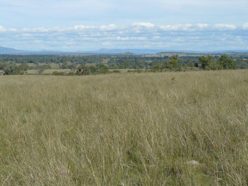 """ Box Hill "", Bingara, NSW 2404"