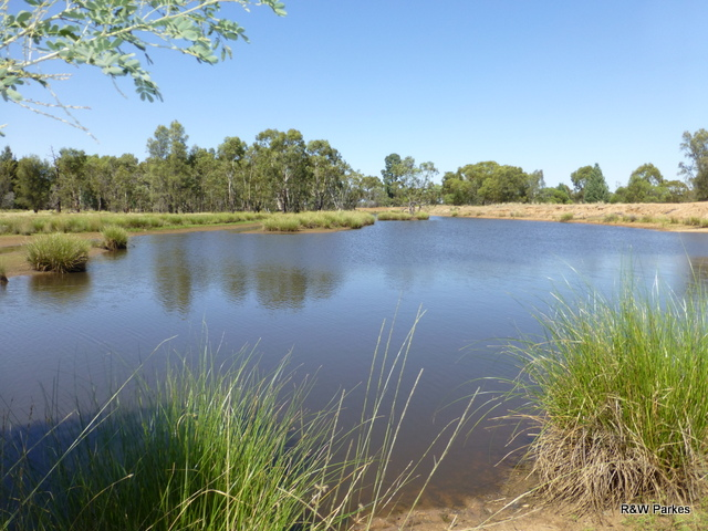 1180 Collingwood Lane, Bruie Plains, NSW 2875