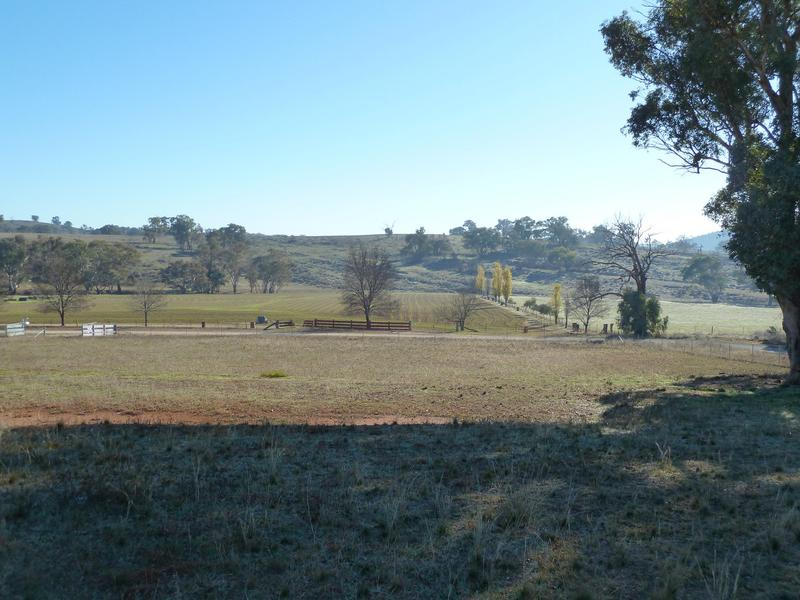 Lot 100, 59 Jason Street, Molong, NSW 2866