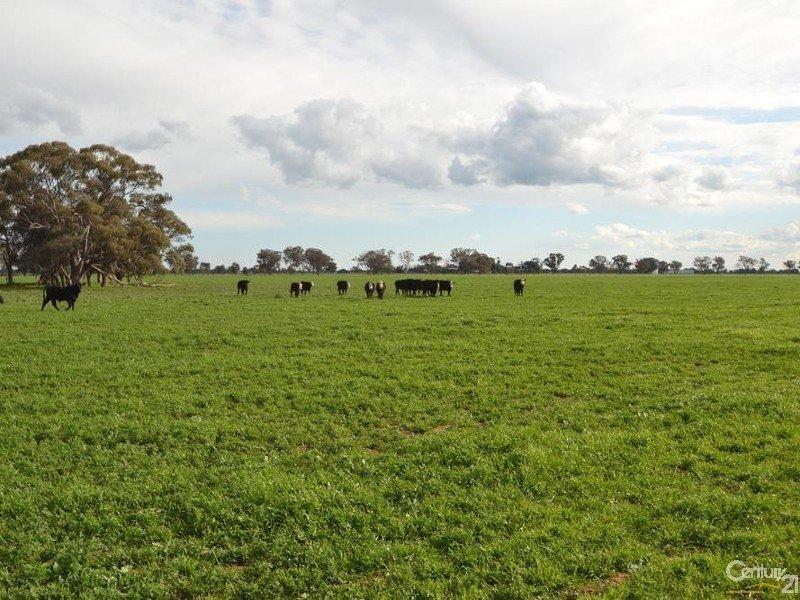 Thyra Road, Moama, NSW 2731