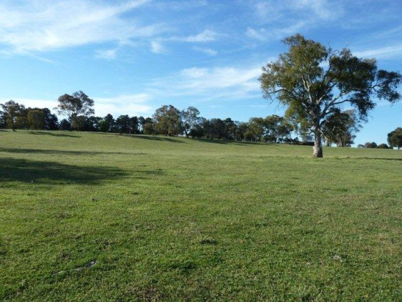 Lot 306 Carters Lane, Binalong, NSW 2584