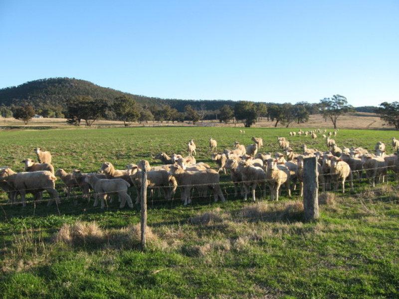 0 Sunview, Mandagery, NSW 2870