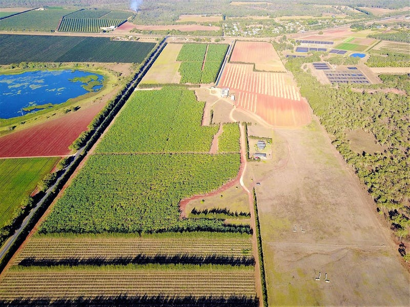 Lankester Plantations, Walkamin, Qld 4872