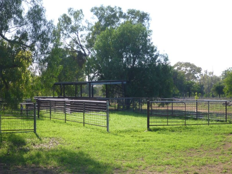 """ Windella, Nyngan, NSW 2825"