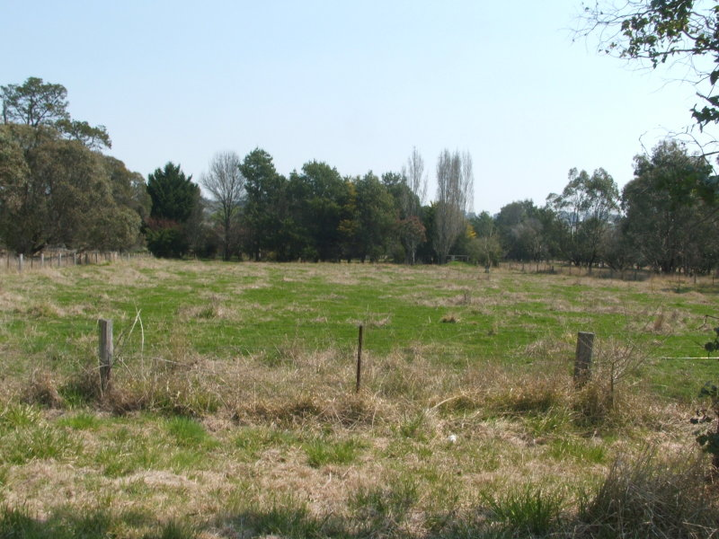 Lot 5, Ferguson St, Glencoe, NSW 2365