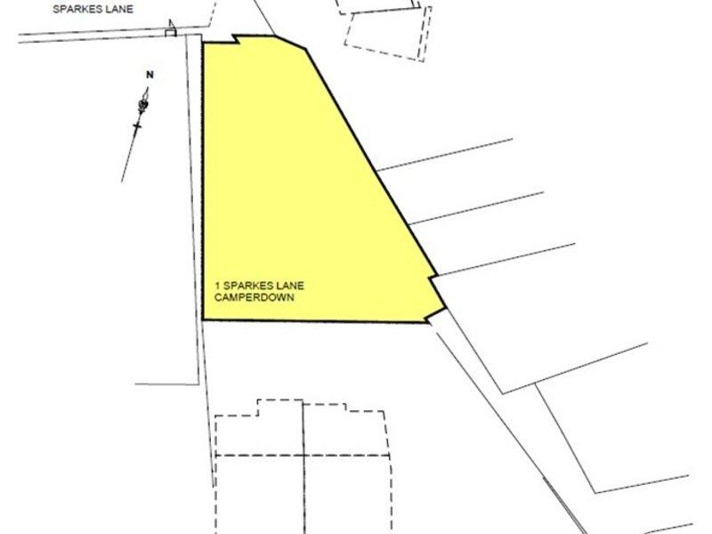 1 Sparkes Lane, Camperdown, NSW 2050