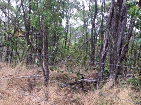Lot 2 Wilton Access, Cooktown, Qld 4895