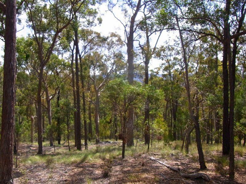 L417 Lyrebird Lane, Millingandi, NSW 2549