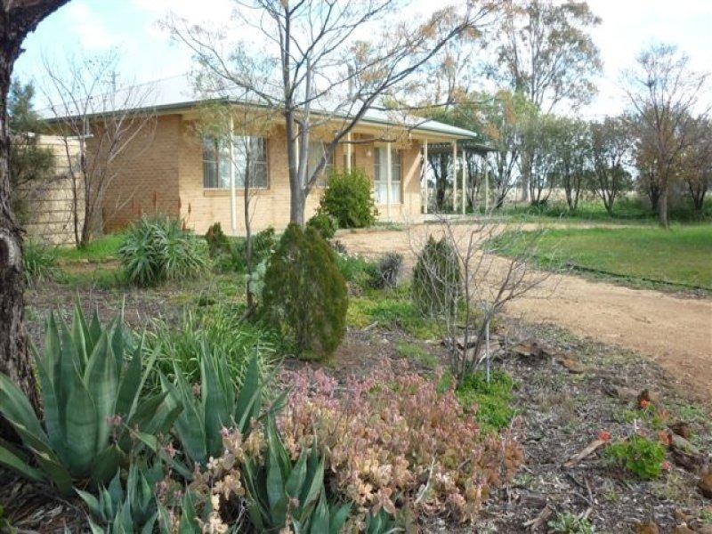 340 Mahers Hill Rd, Gilgandra, NSW 2827
