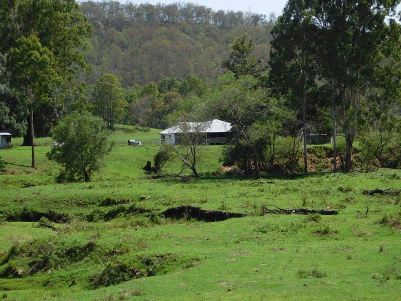 600 Upper Cherry Tree Creek Road, Mongogarie, NSW 2470