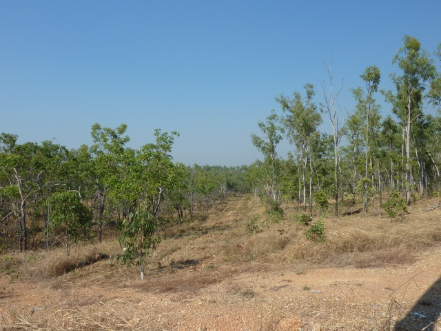 165 Madigan Rd, Marrakai, NT 0822