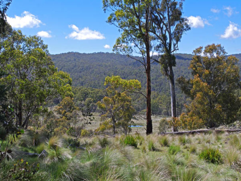 Green Hills Road, Peak View, NSW 2630