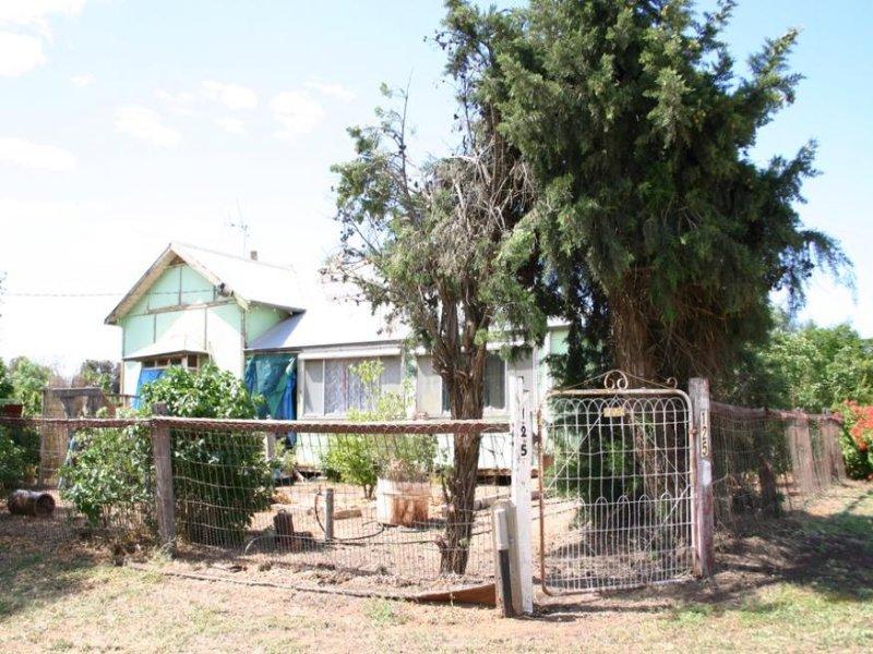 125 Murray Valley Highway, Lake Boga, Vic 3584