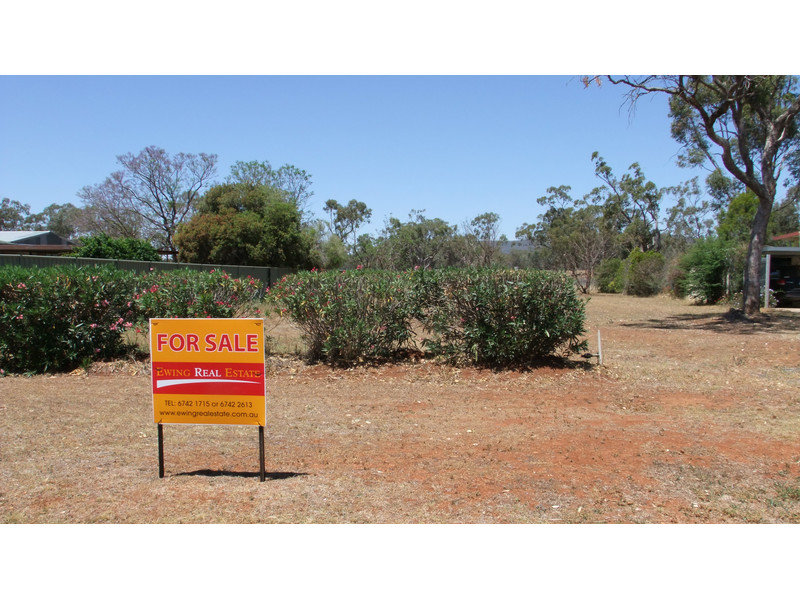 Lot 1, Pine Street, Curlewis, NSW 2381