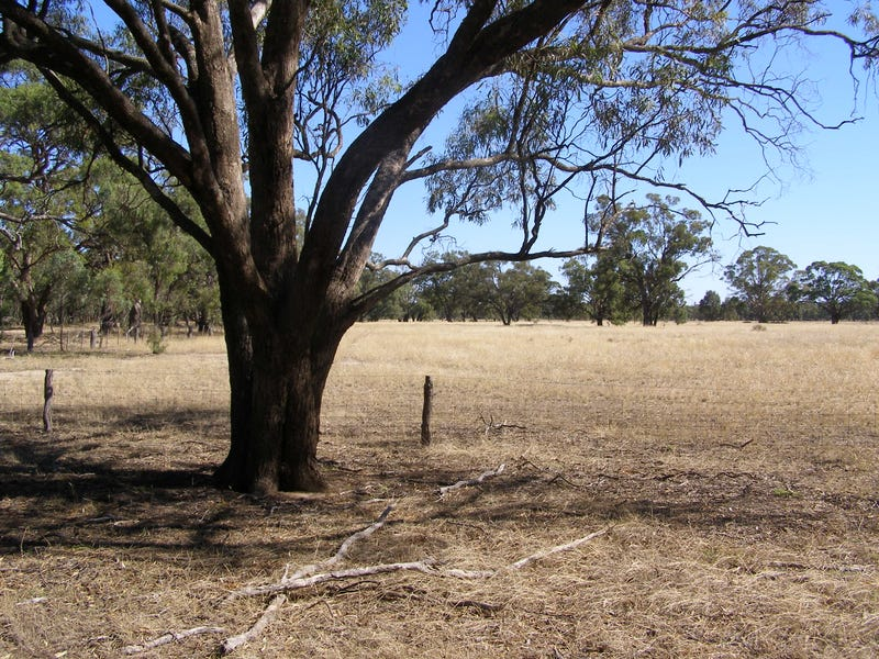 120 Line, Moama, NSW 2731