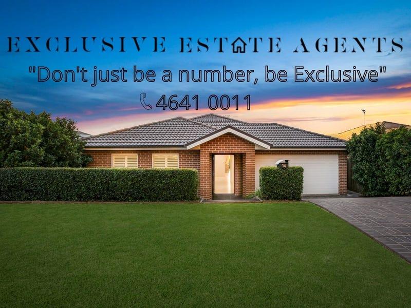14 Adams Circuit, Elderslie, NSW 2570