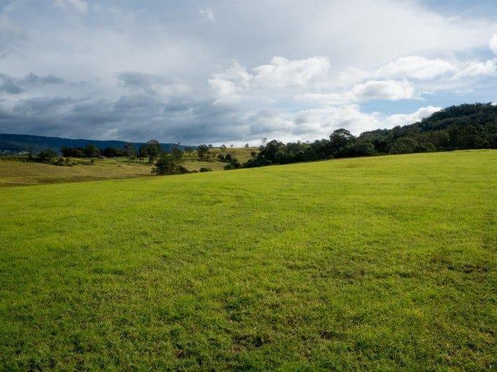 Lot 3700 Fig Tree Release, Calderwood Valley Estate, Calderwood, NSW 2527