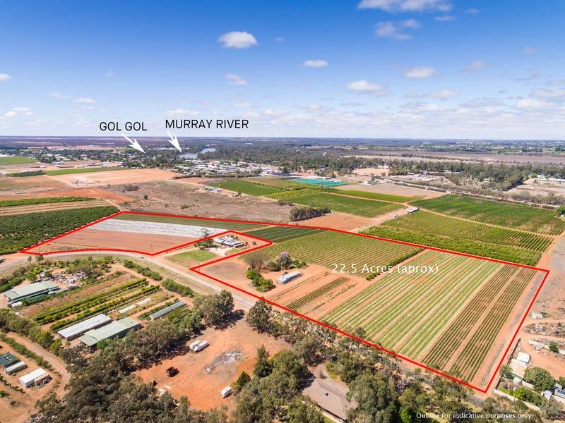 250 Pitman Avenue, Gol Gol, NSW 2738