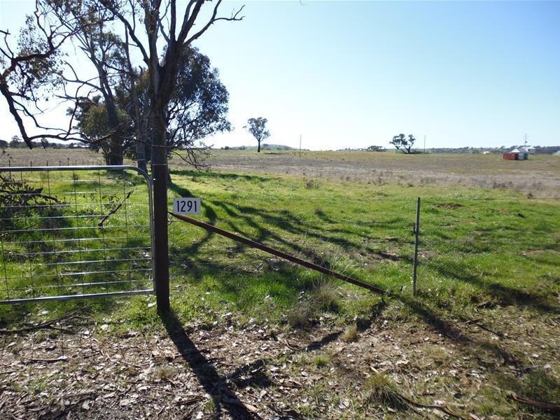 Lot 203, 1291 Belowra Road, Murringo, NSW 2586