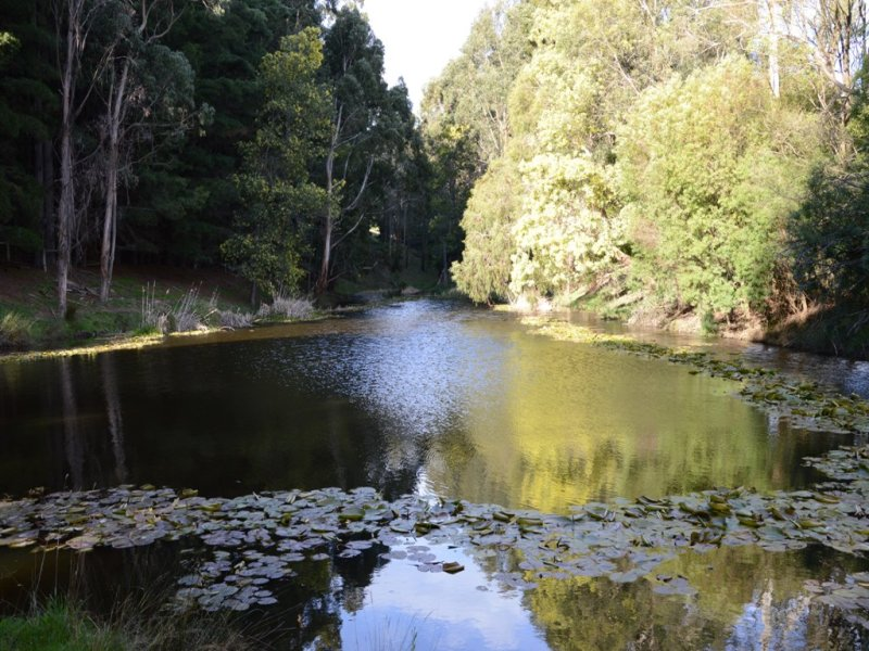 Lot 2 Korumburra South Road, Korumburra South, Vic 3950