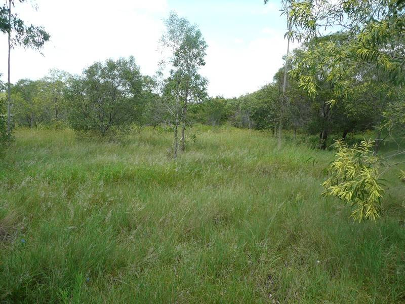 Lot 44, RIVER PINES DRIVE DELAN, Wallaville, Qld 4671