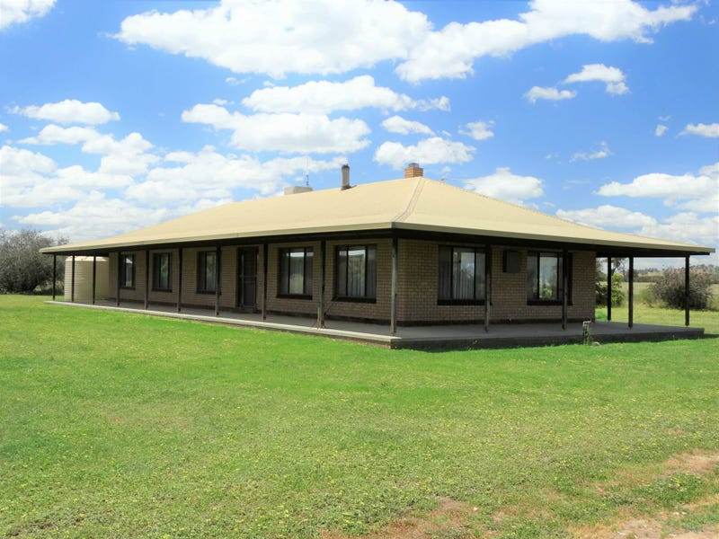 554 Reapers Road, Henty, NSW 2658