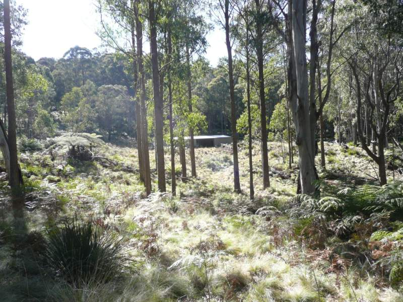Address available on request, Hanging Rock, NSW 2340