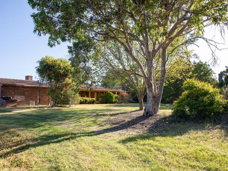 424 Mt Lindesay Road, Tenterfield, NSW 2372