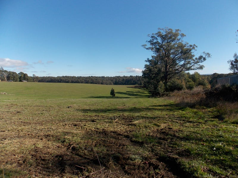 Lot 13, 99 PHEASANT CREEK ROAD, Kinglake, Vic 3763
