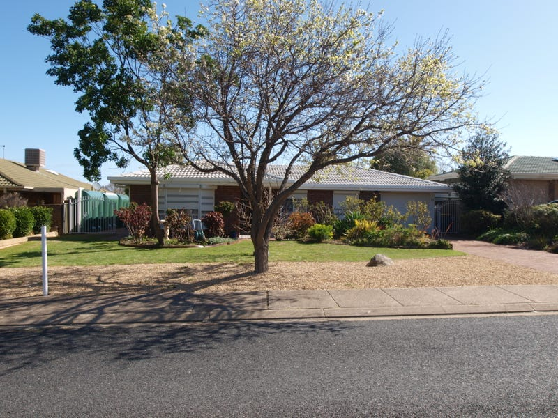 20 CARRUTHERS DRIVE, Modbury North, SA 5092