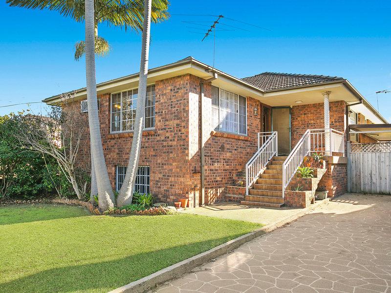 20 Cecil Street, Wareemba, NSW 2046