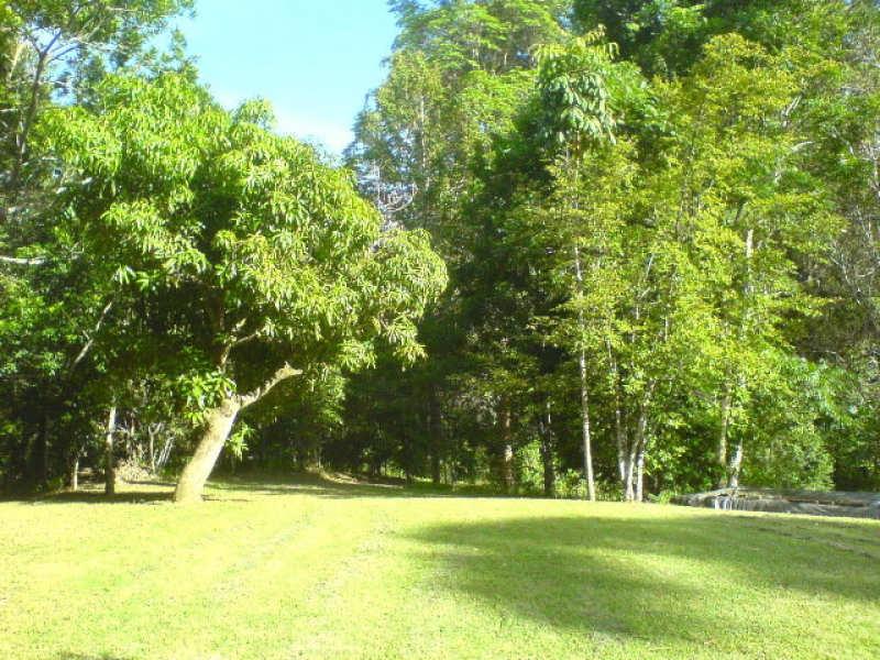 768 Hydes Creek Rd Valery, Bellingen, NSW 2454