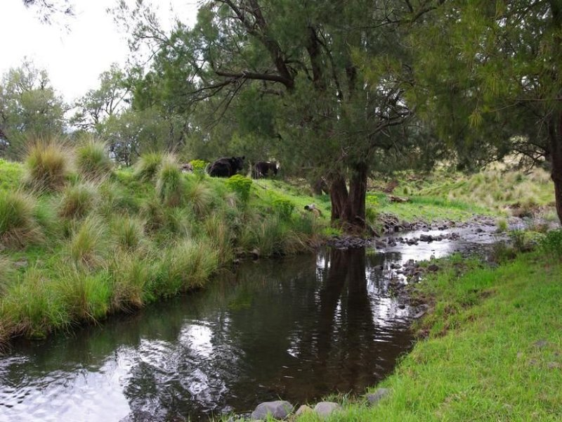 ". Pages River Rd ""Singles Creek"", Murrurundi, NSW 2338"