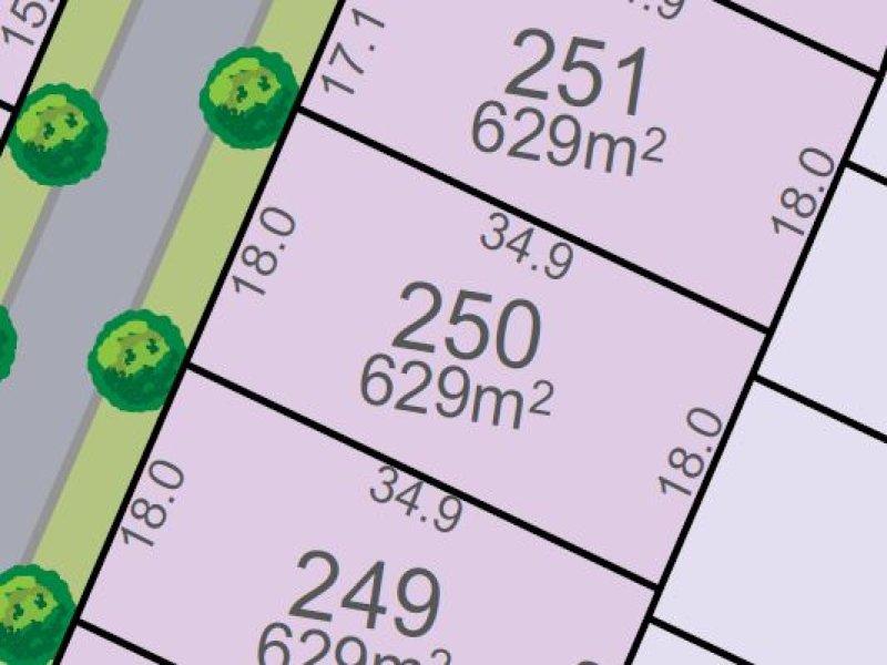 Lot 250, Vine St, Chisholm, NSW 2322